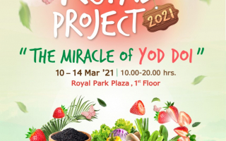 พาราไดซ์ พาร์ค ชวนช้อป สุดยอดผลิตภัณฑ์จากโครงการหลวง งาน Paradise Park Royal Project